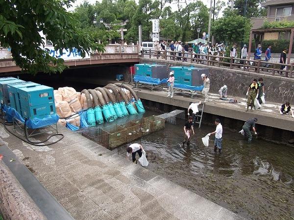 水門川クリーン作戦への参加